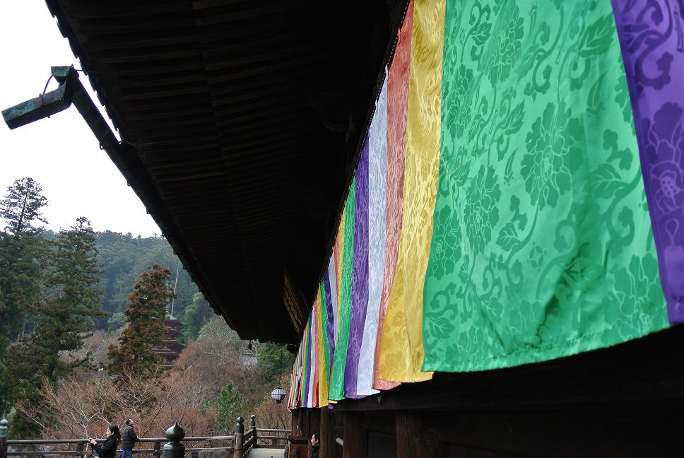 画像 004-1.JPG